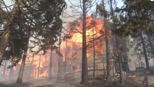 حرائق الغابات تلتهم عشرات المباني وتجبر الآلاف من سكان كاليفورنيا على الفرار