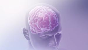النسيان وعدم التركيز.. هل يفقد الدماغ قدرته على ربط المعلومات بتقدم العمر؟