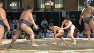 طفلان يواجهان في اليابان أفضل مصارعي السومو