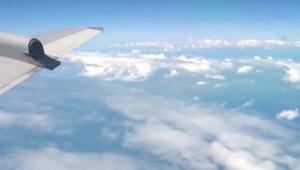 عراك على ارتفاع آلاف الأقدام يجبر طائرة على الهبوط