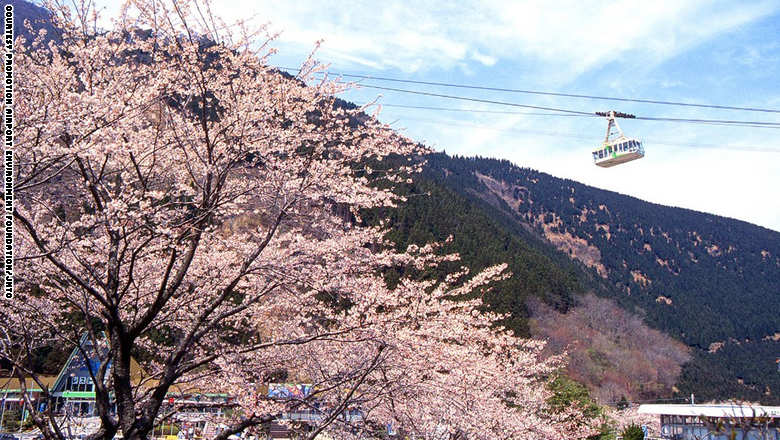 السياحة باليابان 6_232