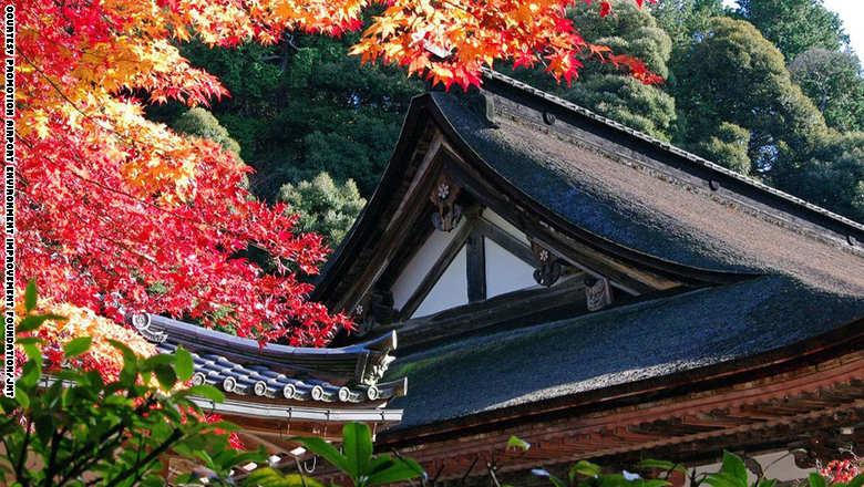 بلاد السحر والغموض اليابان