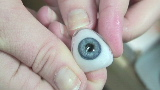 Making a $4,000 artificial eye