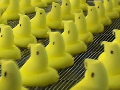 The gooey origins of Peeps