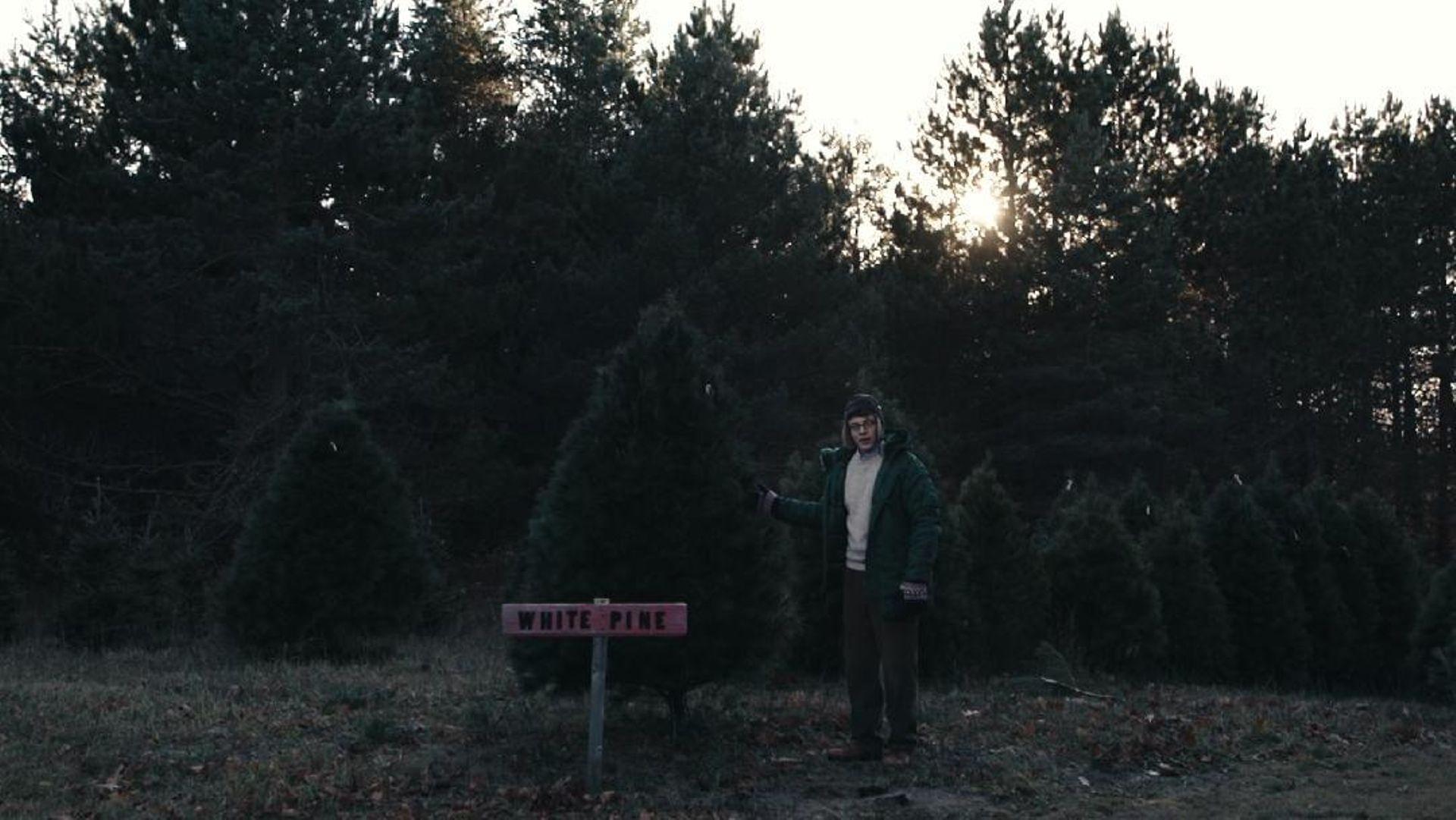 Joe Pera Helps You Find The Perfect Christmas Tree - Joe Pera Talks ...
