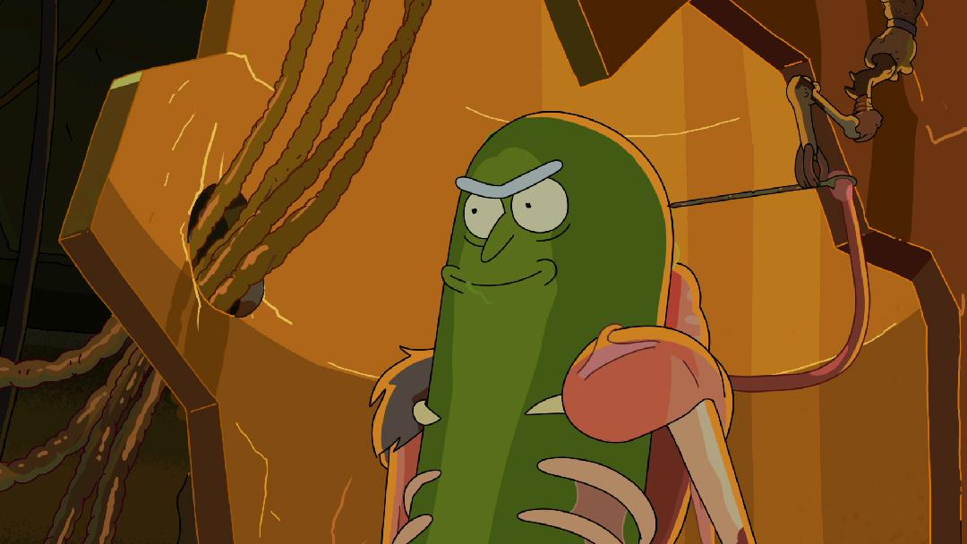 Rick And Morty Inside Pickle Rick Adult Swim