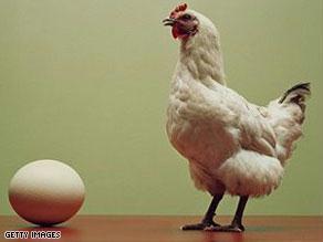 تم استدعاء 380 مليون بيضة في الولايات المتحدة