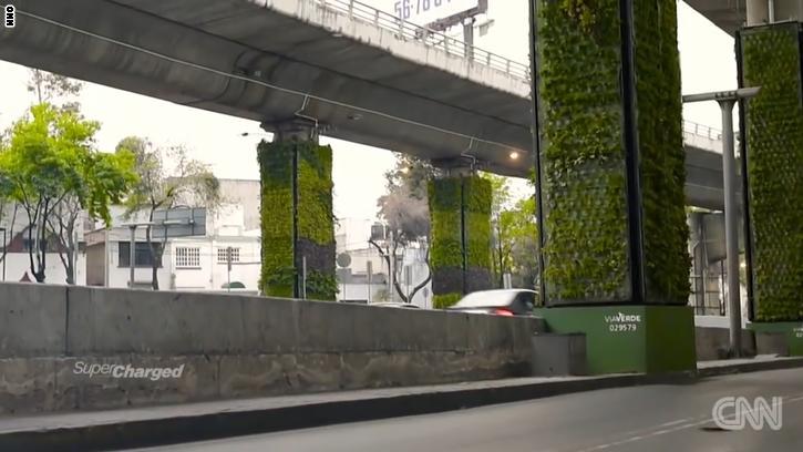 هل تصلح هذه التقنية المبتكرة لحل مشكلة التلوث في المدن