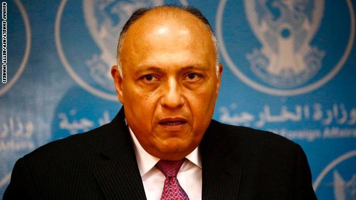 شكري: قطر تحاول زعزعة استقرار المنطقة.. وتضحيات المصريين ضد الإرهاب لن تذهب سدى