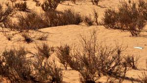 صورة ارشيفية لمنطقة صحراوية شمال العاصمة الرياض