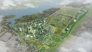 """""""غابات عامودية"""" تجتاح الأفق..كيف تختلف عن الغابات التقليدية؟"""
