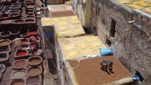 دار الدباغ بفاس... منبع الجلد المغربي الأصيل