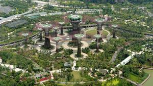 بالصور..كيف ستكون الأشجار في مدينة المستقبل؟