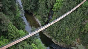 بالصور..أجمل جسور المشاة في العالم