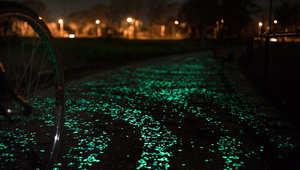 بالصور..طريق مضاء بالنجوم لتخليد ذكرى فان غوخ