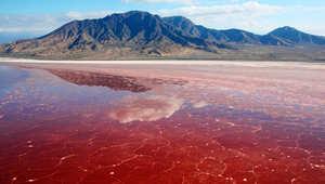 بحيرة النطرون شمال تنزانيا في الصدع الشرق إفريقي