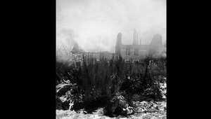 قتل أكثر من 100 ألف ألماني, و 67 ألف أمريكي بالمعارك، وفق المتحف القومي للحرب العالمية الثانية