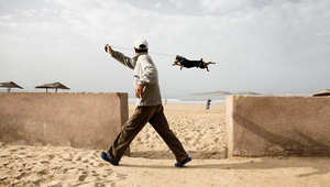 بالصور..مصر والجزائر وبيروت بعدسة أبرع المصورين الفوتوغرافيين