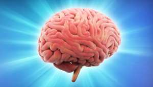 هل دماغك سعيد؟ أجب هذه الأسئلة لتعرف
