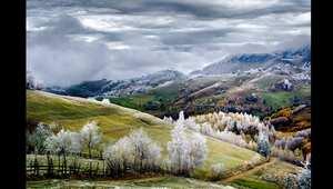 """تكريم """"رومانيا أرض قصص الخيال"""" لإدوراد غوتيسكو"""