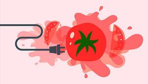 هل يمكننا أن ننتج الكهرباء من الطماطم مستقبلاً؟