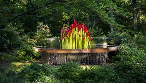 """ورود """"زجاجية"""" تنمو في قلب هذه الحديقة """"السحرية"""""""