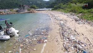 تلوث المحيطات.. كارثة تهدد الحياة بهونغ كونغ