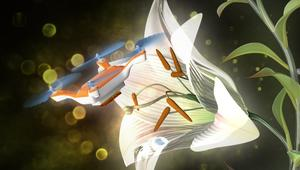 لأول مرة.. شاهد كيف تلقّح هذه الطائرة الموجّهة الزهور