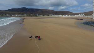 شاطئ يختفي 30عاماً ويعود إلى الحياة بإيرلندا