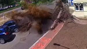 شاهد لحظة انفجار أنبوب مياه تحت الأرض