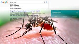 """كيف يساعد محرك """"غوغل"""" في البحث عن الأمراض المعدية؟"""