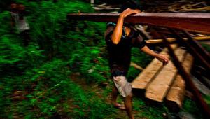 كيف تنقذ الغابات المطيرة من الانقراض؟ ابني مركزاً صحياً!
