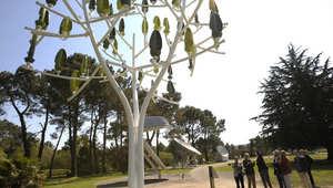 أشجار صناعية تولد الطاقة على مدار السنة