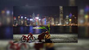 قام المصمم ريكس تسي بعمل تشكيلات من الليغو تظهر أبرز معالم هونغ كونغ، لتعكس قطع من البلاستيك حياة الناس ونبض الشارع في المدينة