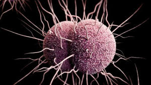 تعرّفوا إلى أشد أنواع البكتيريا المقاومة للمضادات الحيوية