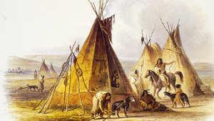 كيف يحيي الهنود الحمر مهرجان الفروسية التقليدي؟