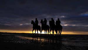 بالصور..الخيول تكتب رسالة حب للسماء والبحر والشمس