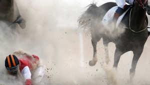 بالصور..كيف تتنافس الخيول عبر الكثبان الرملية في الصحراء