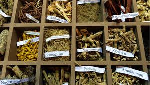 الطب البديل وطب الأعشاب