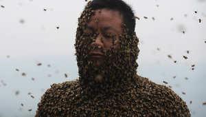 راعي النحل، شي بينغ، محاط بالنحل.