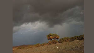 أمطار غزيرة في عسير بالسعودية وتحذيرات في المدينة