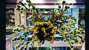 الفنان أزوما ماكوتو يصنع لوحات تصويرية بالأزهار