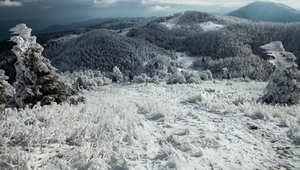 عاصفة جليدية تخلق منحوتات أخاذة بيدي أعظم فنان .. الطبيعة