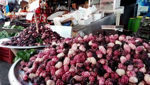 التوت الهزاز، يطلق الدمشقيون هذه التسمية على هذا النوع من التوت الصالح للأكل فقط وليس لصناعة العصير.