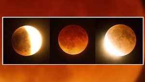 صور القمر قبل، خلال، وبعد الكسوف الكلي في جنوب كاليفورنيا