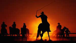 هل تهوى رعاة البقر؟ شاهد منتجعاً للخيول البرية في تجربة كلاسيكية ساحرة