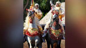 """بالصور..""""فانتازيا"""" نسائية على الخيول في المغرب"""
