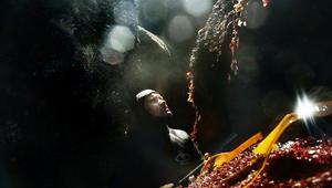 """على """"ساحل الموت"""" يخاطر الصيادون من أجل هذا الصنف الفاخر"""