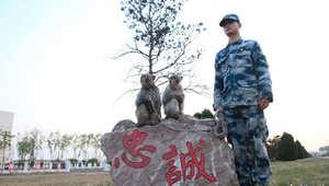 جندي صيني برفقة قردين