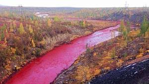 """نهر """"دامٍ"""": صدمة السكان الروس عندما تحولت مياه نهر بأكمله إلى اللون الأحمر"""